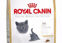 Корм для кошек – Royal Canin BRITISH SHORTHAIR KITTEN 2 КГ.